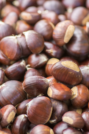 Scattered raw sweet chestnuts, tasty and healthy brownish nuts