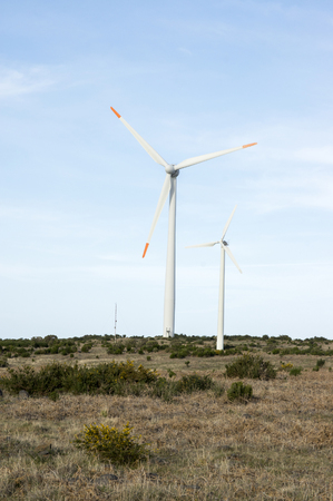Plateau Paul da Serra, high plain with wind turbines on Madeira island in the middle of the island, Portugal, Europe