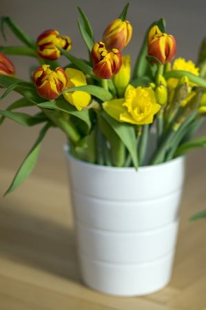 Detail of tulips and daffodils bouquet, ornamental spring flowers, yellow red flower heads in bloom with leaves in vase