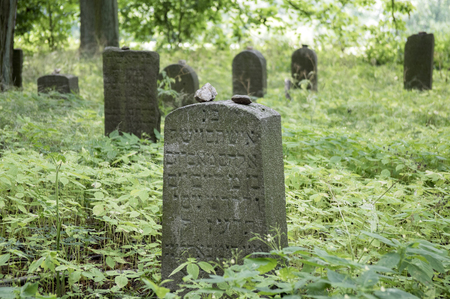 Abandoned Jewish cemetery in the woods near Havlickuv Brod, Czech republic, graves surrounded with weeds