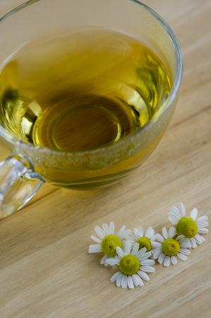Matricaria chamomilla flowers and trasparent cup of tea on wooden table, fresh flowering herbal medicine in glass mug Stock Photo