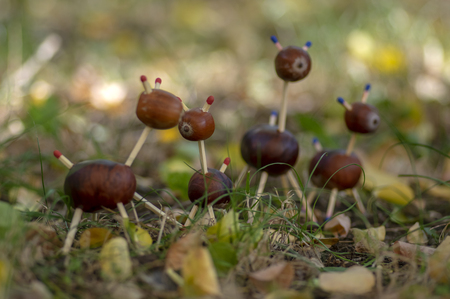 Group of funny chestnut animals in green grass, traditional autumn handcraft, European roe deer with family made from autumn fruits and safety matches Stock Photo