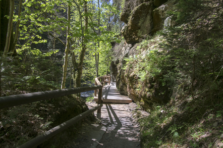 Wood and rock landscape in Bohemian Switzerland, Kammintz George rocky ravine, protected area Saxon Switzerland National Park, wooden path with railing