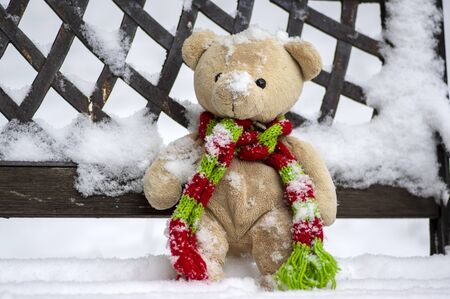 Abandoned beige plushy teddy bear with red green striped knitted scarf sitting on the bench covered with white snow during winter season Imagens