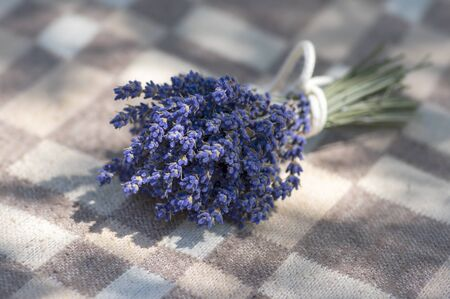 Lavandula angustifolia bunch of dry flowers in bloom tied with white rope, on checkered textile background in sunlight, siplicity still life 스톡 콘텐츠