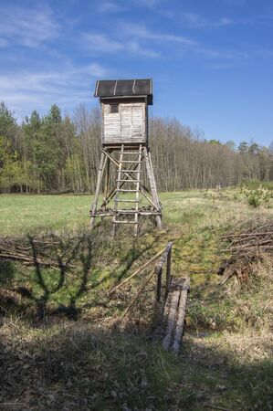 Wooden deer stand looks like elevated tiny house with ladder situated on small glade in the middle of forest, beautiful early springtime weather, sunlight and blue sky