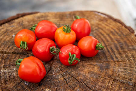 Group of ripened tasty red raw strawberry tomatoes Solanum lycopersicum on wood on green natural background, tasty healthy vegetables still life in daylight