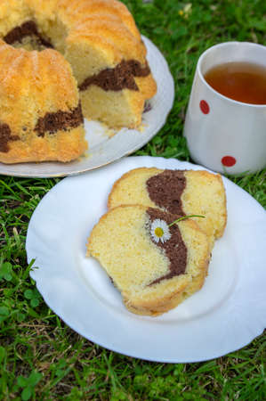 Gugelhupf in green grass background, very tasty edible two-colored Czech rustic sweet cake called babovka, ready to eat, daisy flower, tea break in summer, herbal tea in the spotted cup
