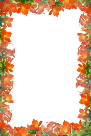 Valentines frame - collage from kalanchoe flowers, vertical Stock Photo