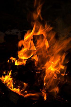 picknic: Flame in campfire. Picknic, June 2007