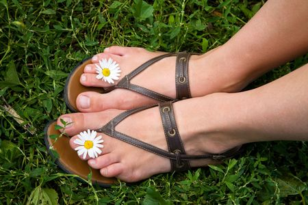 Woman legs with camomile flowers photo