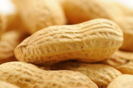 Peanuts on white background photographed in studio