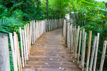 Wooden bridge in the garden of Hotel in Thailand photo