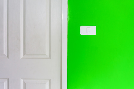 Simple light switch on a green wall with white door photo