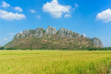 slushy: Rice field among mountain on central of Thailand, Khao Hnor, Nakhon Sawan Province Stock Photo