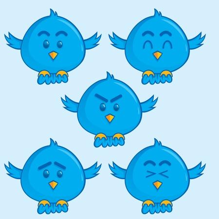pajaro azul: Una mascota sencilla p�jaro azul
