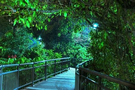 elevated walkway: Scenic night view of lit elevated walkway surrounded by trees, at canopy walk, Kent Ridge Park, Singapore Stock Photo