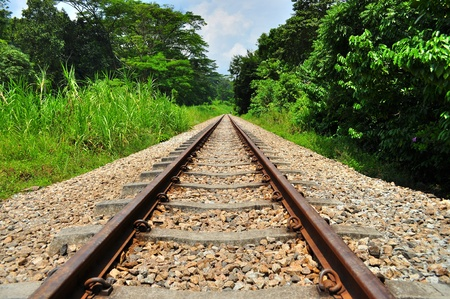 bukit: Wide view of train railway surrounded by greenery at Upper Bukit Timah Stock Photo
