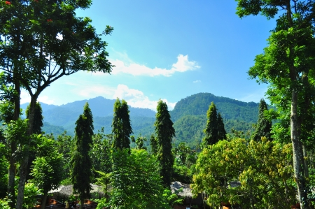 mountainous: Mountainous scenery with greenery at Cianjur, West Java, Indonesia, on a sunny day Stock Photo