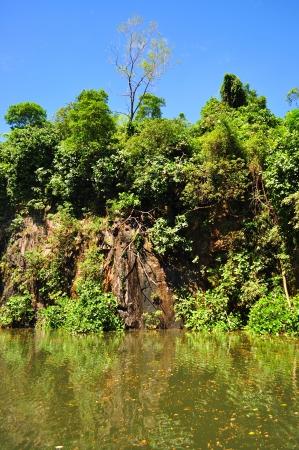 bukit: Quarry at Bukit Batok nature park - Singapore - on a sunny day