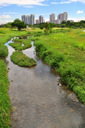Bishan Park - Singapore - with green pasture and small river Stock Photo - 17894368