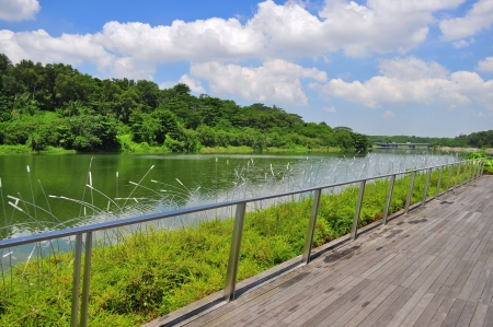 waterway: A wooden walkway by the river with a lot of greeneries - Punggol waterway, Singapore