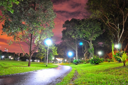 jogging track: Bishan Park jogging track in the cloudy night