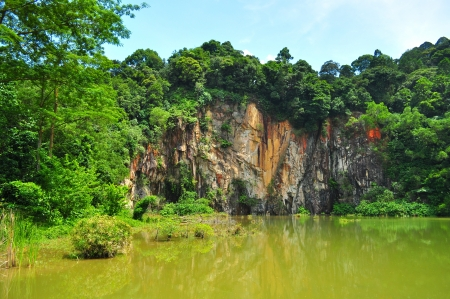 Singapore Quarry, surrounded by greenery, located in Bukit Timah nature reserve 版權商用圖片