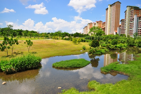 Green pasture with a river at Bishan Park, with some public apartments in the background Stock Photo - 32417009