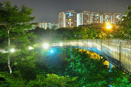 elevated walkway: Walkway surrounded by trees with apartments as background near Yishun Pond Stock Photo