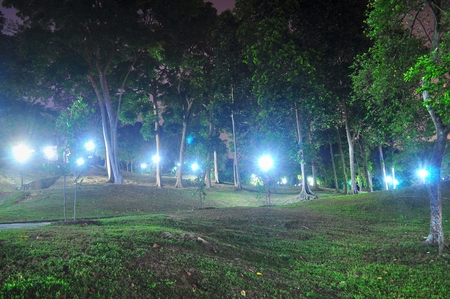 lighted: Lighted forest by night at Clementi Woods Park Clementi, Singapore Stock Photo