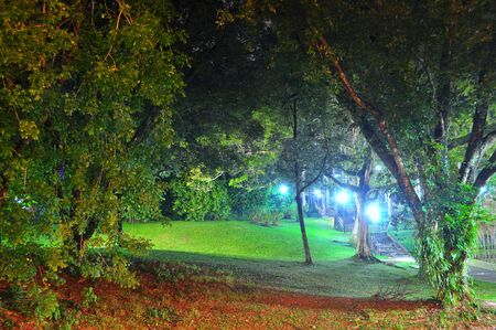 Ang Mo Kio Town Garden, located in north of Singapore,  by night Banco de Imagens