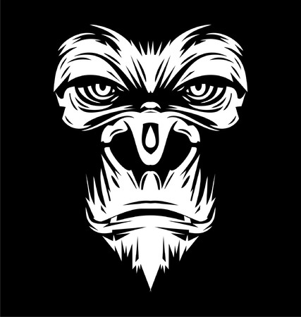 gorilla: White Gorilla Face Illustration