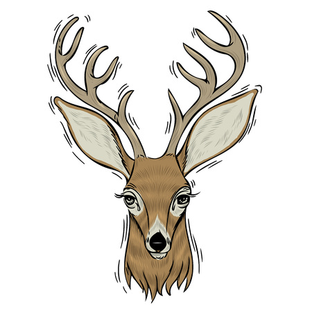 Hand drawn head of deer, Vectorial isolated elements vector illustration Henna Mandala  stylized for Cover book or card, tattoo more. Design for spiritual relaxation for adults. 일러스트