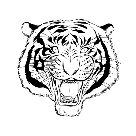 Hand drawn head of tiger, Vector isolated elements vector illustration Henna Mandala  stylized for Cover book or card, tattoo more. Design for spiritual relaxation for adults.