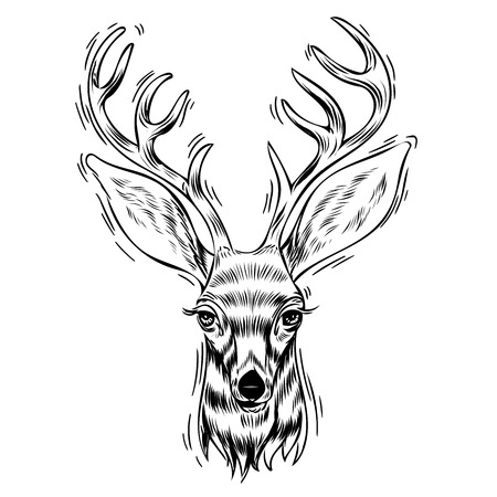 Hand drawn portrait of deer, Vectorial isolated elements vector illustration Henna Mandala Zentangle stylized for Cover book or card, tattoo more. Design for spiritual relaxation for adults.
