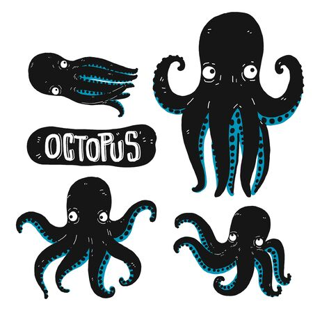 Set of Octopus silhouette. Hand drawn vector illustration. Outline with transparent background.