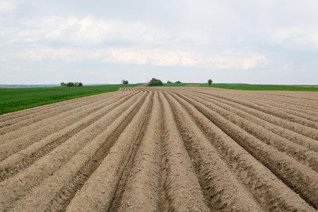 A close-up of furrows in a freshly plowed field in spring. Krakowsko-Czestochowska Upland, Silesia, Poland 版權商用圖片