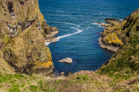 Longhaven Cliffs, Nature Reserve. Aberdeenshire, Scotland, UK Stock Photo
