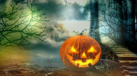 Halloween pumpkin in the spooky forest