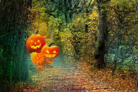 Halloween background. Pumpkins in the forest.