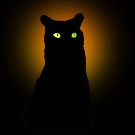 Black scary cat in the moonlight