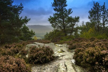View from Craigendarroch Hill. Ballater, Aberdeenshire, Scotland, UK. Cairngorms National Park.