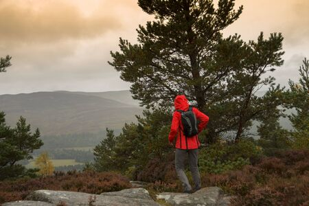 Hiker on the top of Craigendarroch Hill in Ballater, Royal Deeside, Aberdeenshire, Scotland. Cairngorms National Park.