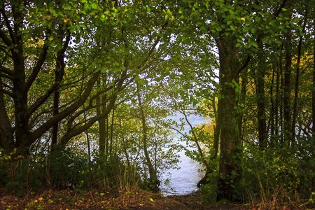 Shore of Loch Lomond and The Trossachs National Park in Scottish Highlands. Scotland, UK.