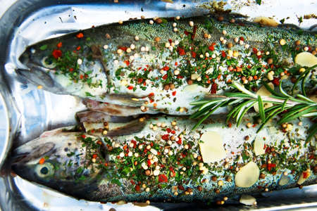 Raw, ready to cook rainbow trout fish with herbs and spices in a plate.