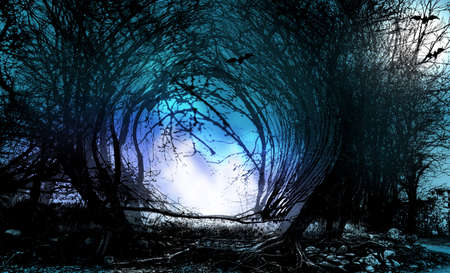 Halloween background. Gate from branches in spooky forest.