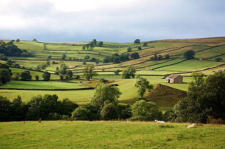 wharfedale: Wharfedale en los valles de Yorkshire en igualar de los comienzos del verano