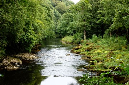 wharfedale: A peaceful setting of the River Wharfe near the Strid and Bolton Abbey, Yorkshire