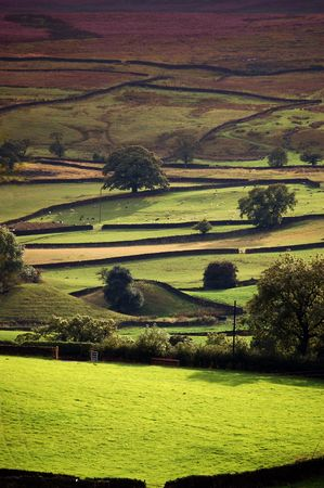 wharfedale: Los campos forman un patr�n en los valles de Yorkshire veranos en una noche
